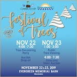 2019 Conifer Chamber Festival of Trees