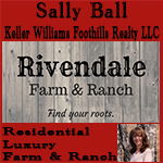 Sally Ball - Keller Williams Foothills Realty LLC