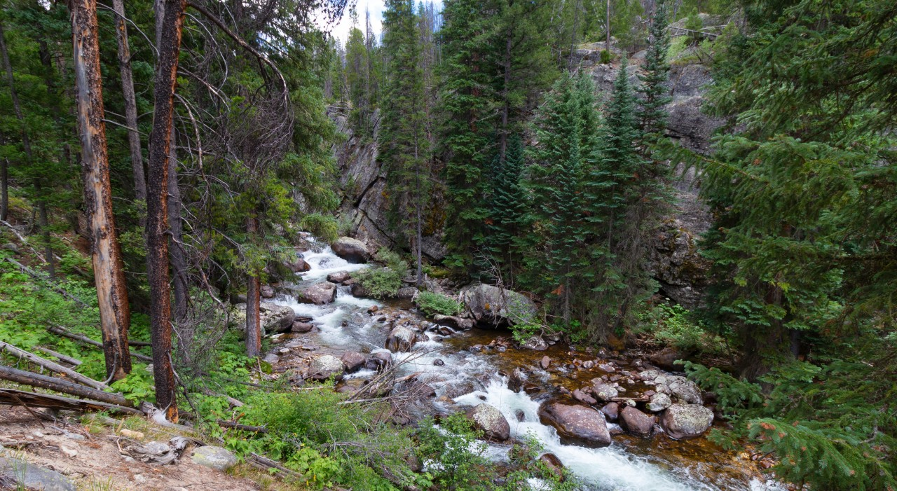 Exploring Cascade Creek in the Indian Peaks Wilderness