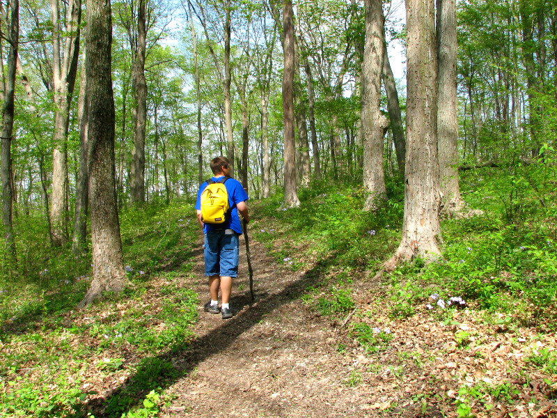 backpack02_2020-06-01.jpg