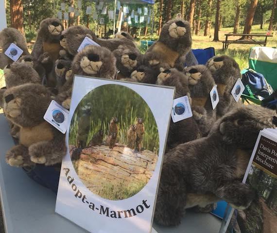 MarmotsMarmotsMarmots.jpg
