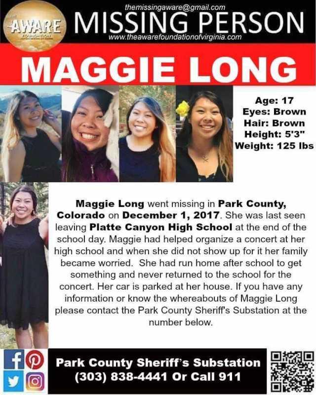 MaggieLongMissingposter.jpg