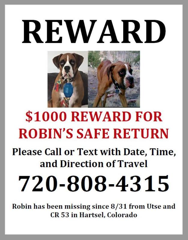 RewardforMissingDogRobinfromHartsel.jpg