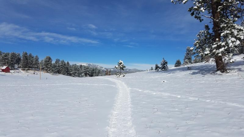 SnowycourseBOERATurkeyTrot.jpg