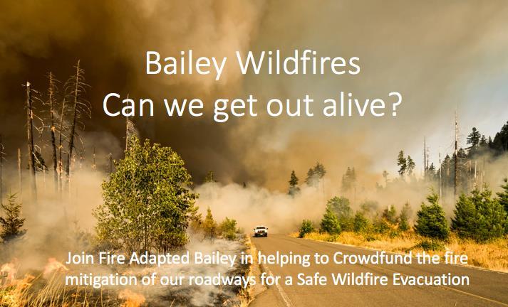 BaileyWildfiresCanwegetoutalive.jpg