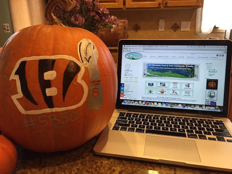 BengalsSB50Pumpkin.jpg
