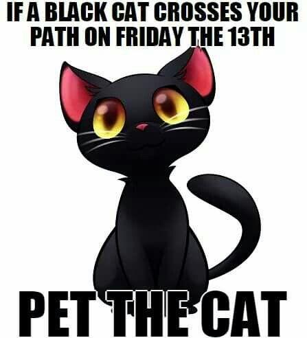acd2bcad8e2b3726de888a885834eb3e--black-cat-humor-happy-friday-the-th.jpg