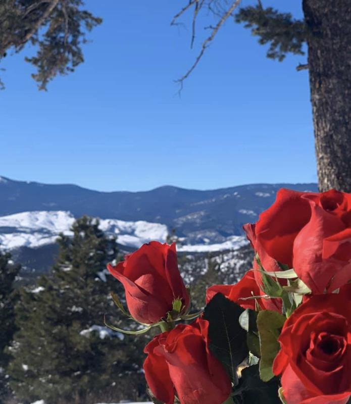 RosesandMountainsMelissaBaker.jpg